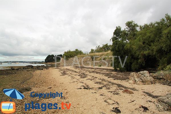 Crique à Séné dans le golfe du Morbihan