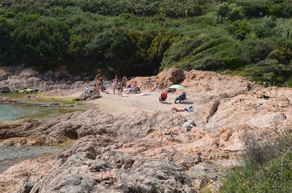 Sagone creek - Corsica