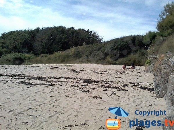 Saisies cove at low tide - Ile de Groix