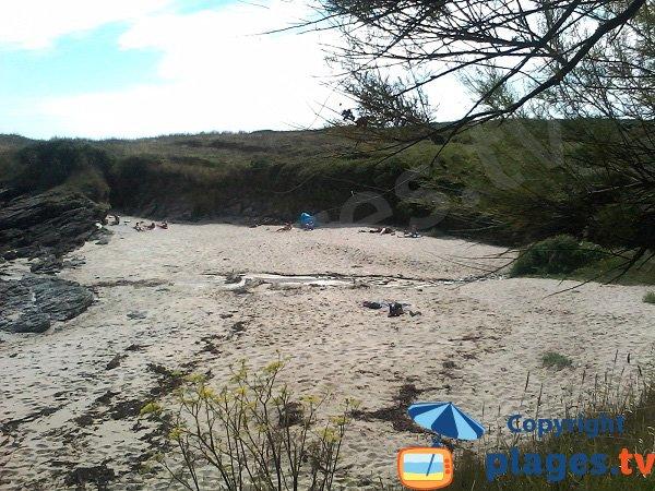 Photo of Saisies beach - Groix island