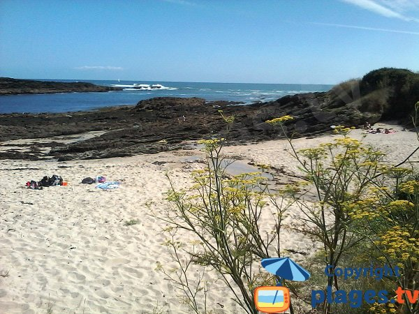 Saisies cove - island of Groix