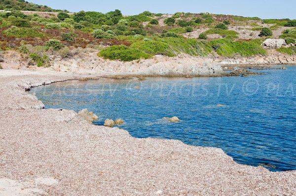 Crique de Saleccia en Corse proche de l'Ille Rousse