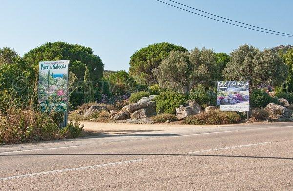 Park of Saleccia in Corsica (Ile Rousse - Monticello)