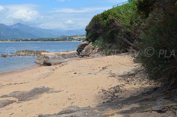 Sofitel creek in Porticcio in Corsica