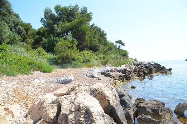 Photo de la crique de St Féréol sur l'ile de Saint Honorat