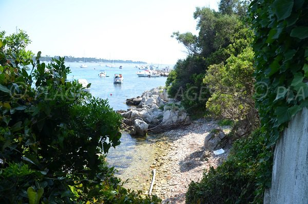 Photo of St Michel cove - island of Saint Honorat