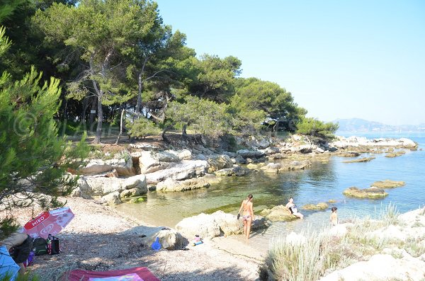 Shaded cove in St Honorat island - St Sauveur