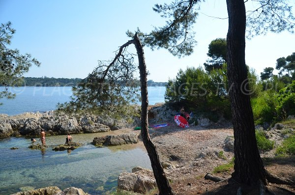 Cove near the St Honorat port