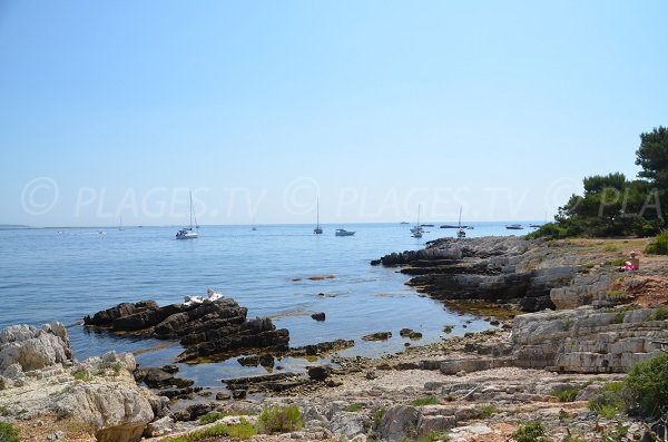 Littoral au nord-est de Saint Honorat
