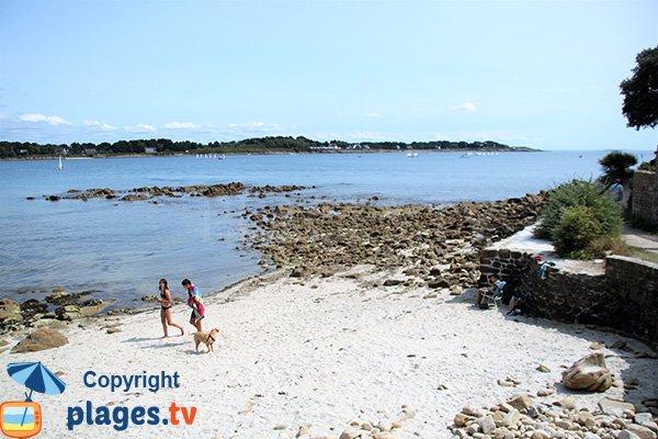 Baignade sur la plage de la Vanneresse - La Trinité sur Mer