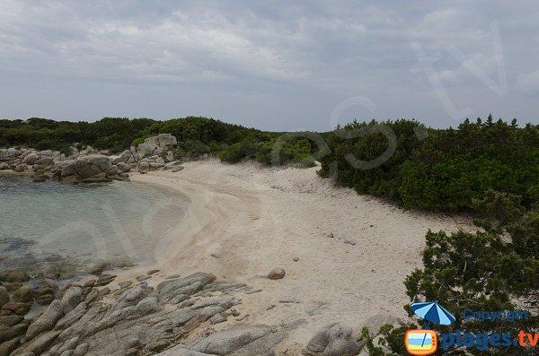 Criques confidentielles golfe de Ventilegne - Corse