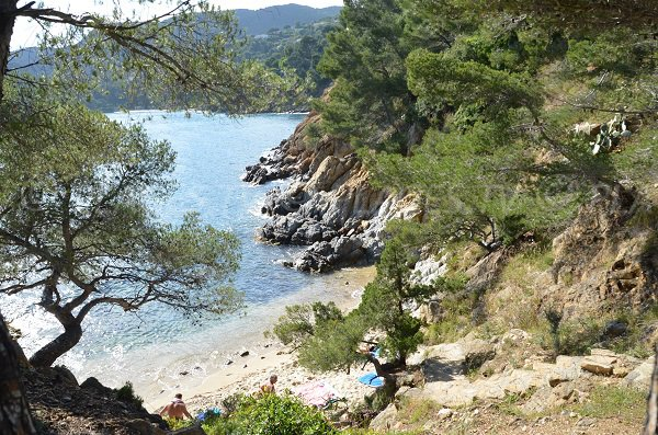 Nudist creek - Layet in Lavandou