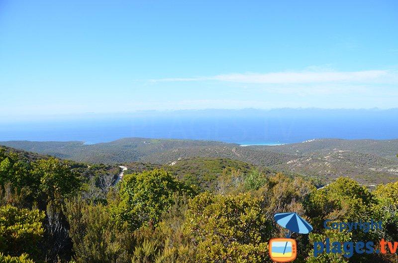 Désert des Agriates du côté de Ghignu - Corse