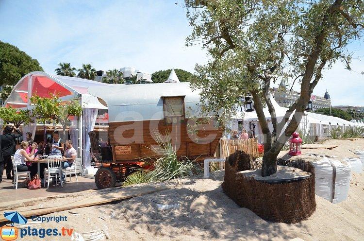 Diligence sur une plage privée à Cannes