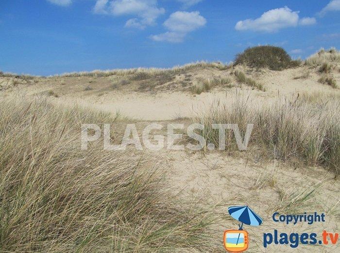 La dune blanche de Bray-Dunes