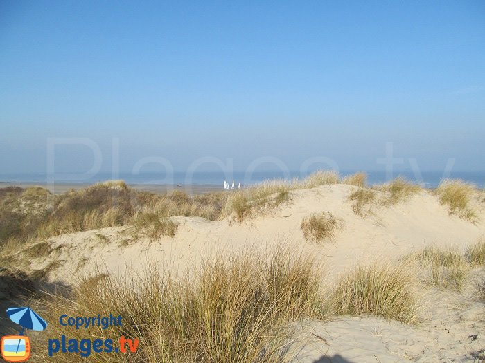 Dune blanche de Bray-Dunes
