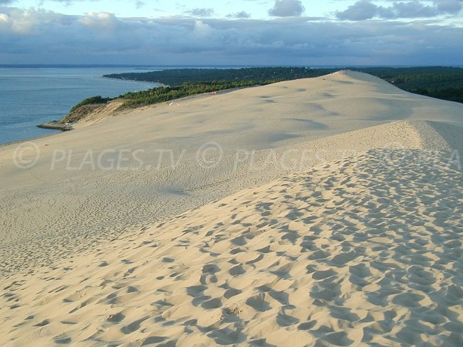 Bay of Arcachon from the dune of Pilat
