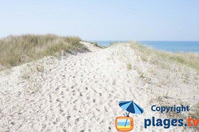 Dune and beach in Saint Germain sur Ay - Normandy