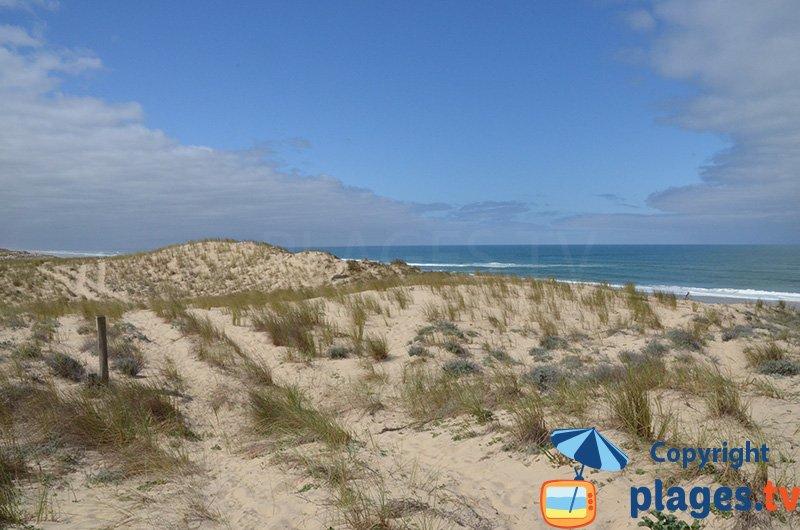 Dunes et immense plage de sable côté Atlantique