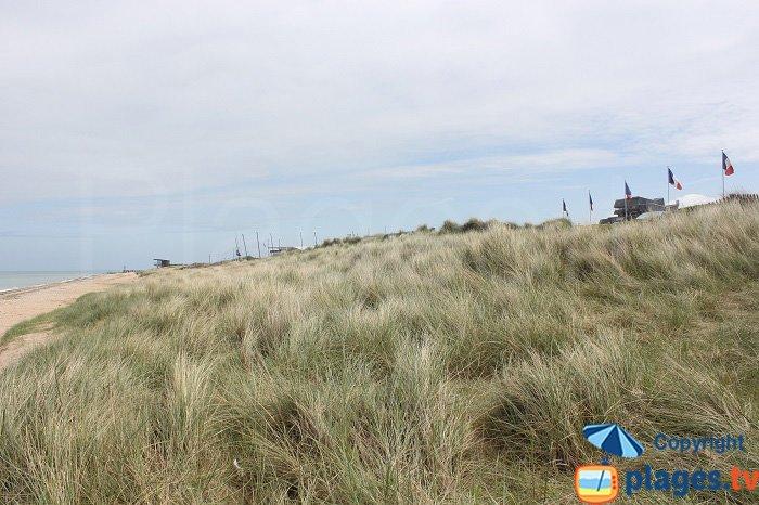 Dunes de Courseulles sur Mer