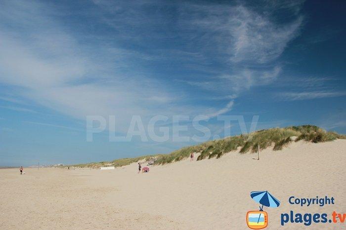 Dunes du Perroquet entre Bray-Dunes et la Belgique