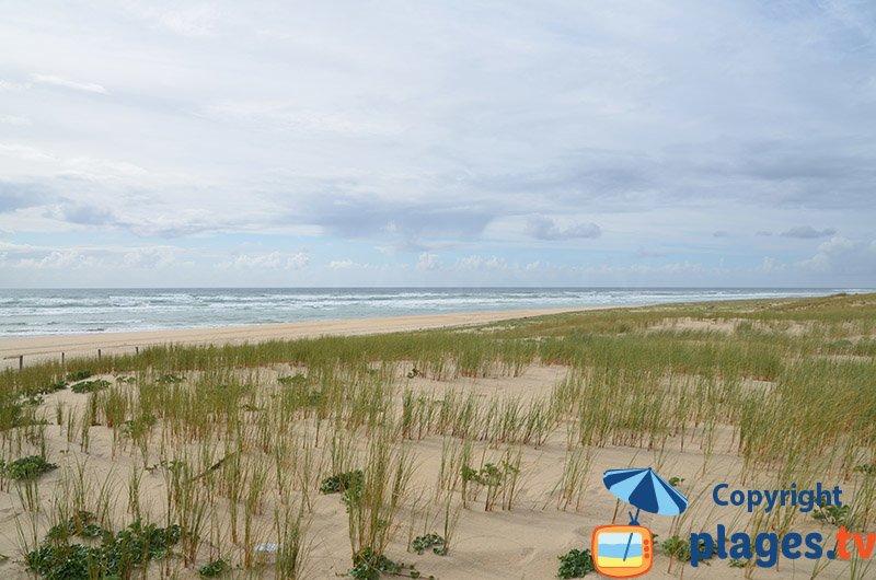 Cap Ferret avec ses dunes et une plage océane