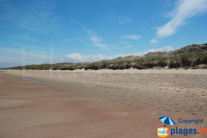 Les escardines: une plage oubliée ?