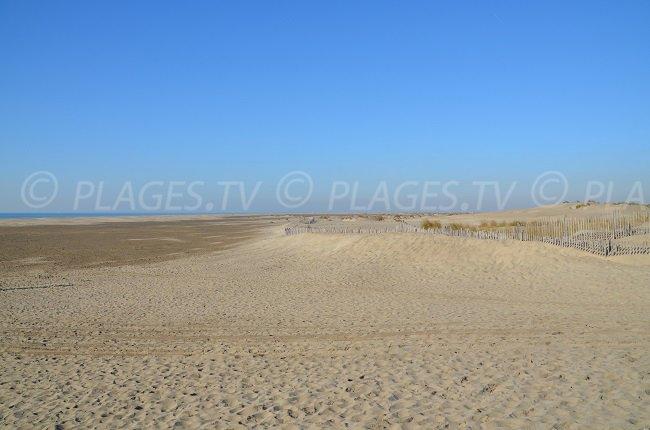 L'espiguette: une vaste plage de sable en Camargue