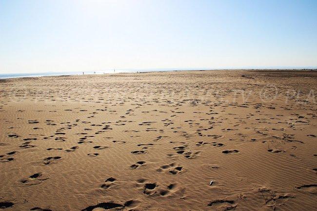 Il deserto dell'Espiguette a Port Camargue