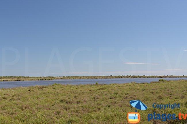étang autour de Salin de Giraud - Camargue