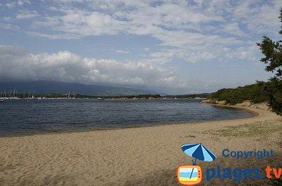 Plage dans la baie de Figari - Corse