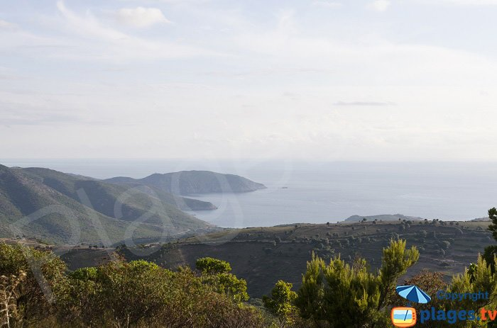 Gulf of Arone in Corsica