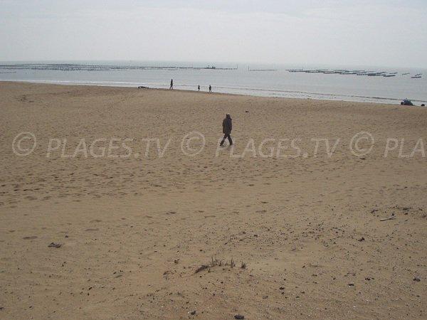 Plage de sable publique à La Faute sur Mer proche du centre-ville