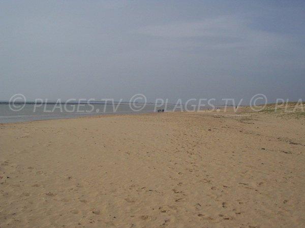 Grand Plage de La Faute sur Mer en Vendée