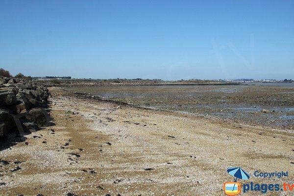 Sand beach - Grève de Carantec
