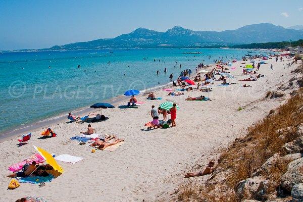 Beach in Calvi - Corsica