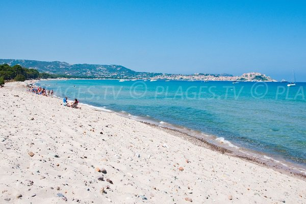 Plage de sable calme à Calvi - Corse