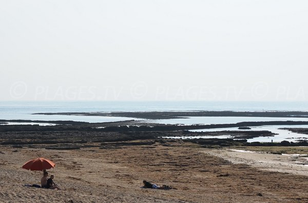 Rochers dans l'eau sur la grande plage du Domino