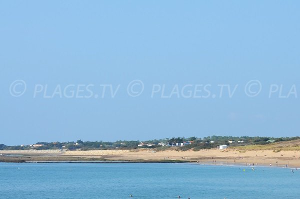 Photo de la Grande Plage de Domino - Oléron