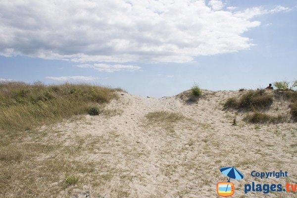 Dunes de la presqu'ile de Gavres