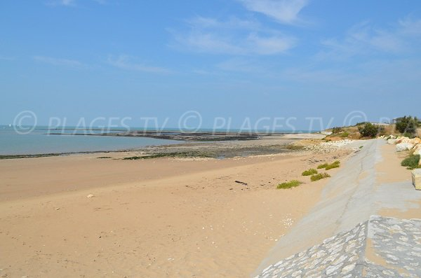 Great beach at low tide - Aix island
