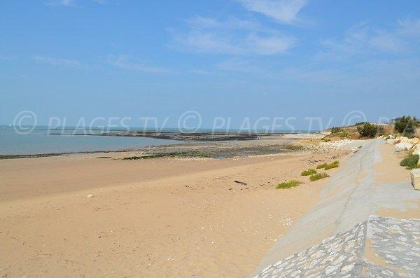 Grande plage à marée basse