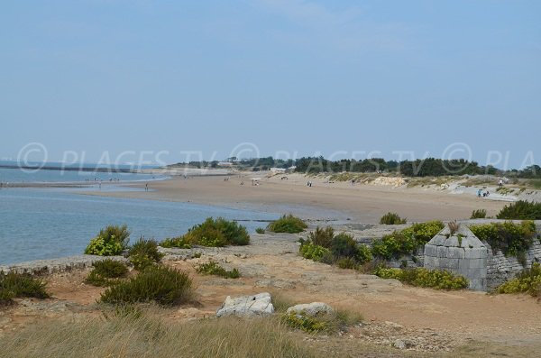 Grande plage sur l'île d'Aix (partie la plus au sud)