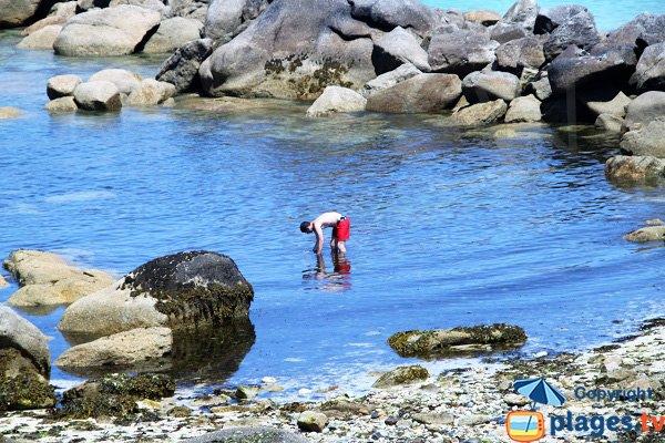 Pêche sur la Grande Plage de Ménéham à Kerlouan