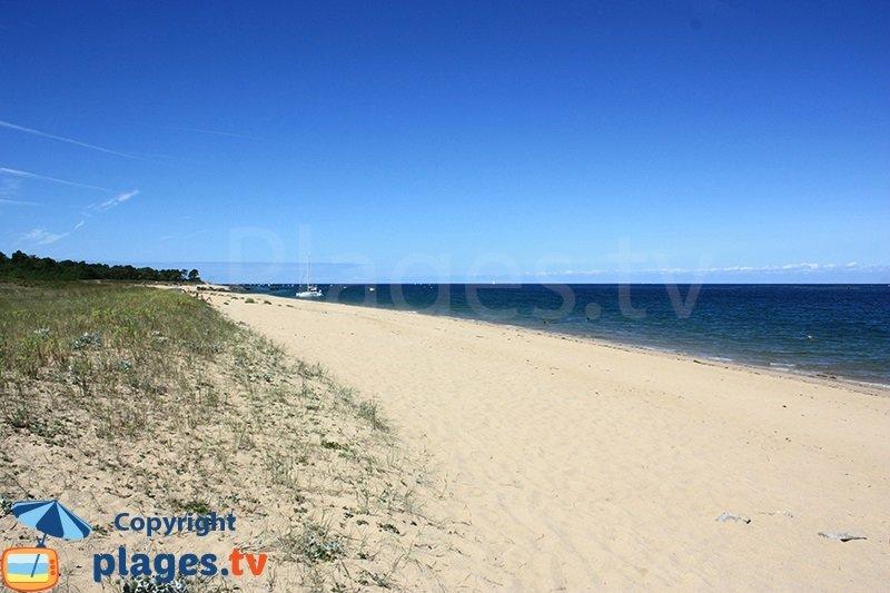 Grande plage sur l'ile Yeu