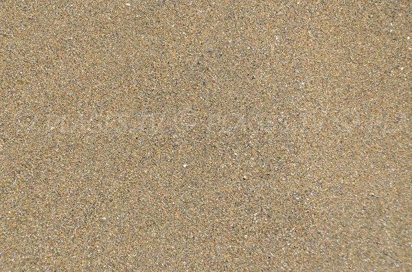Sable de la plage de la Grève Noire de Saint Quay