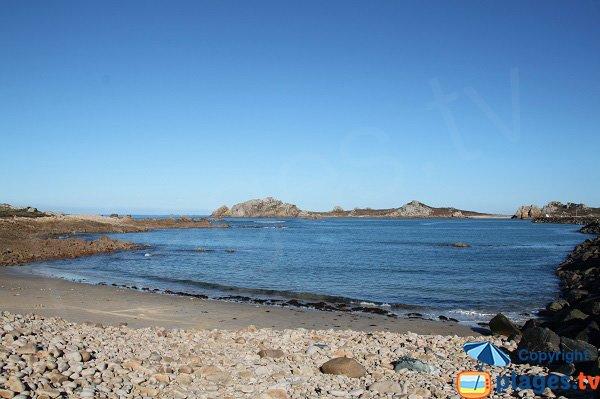 Environnement du port du Diben à Plougasnou