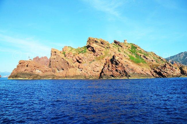 Island of Gargalo