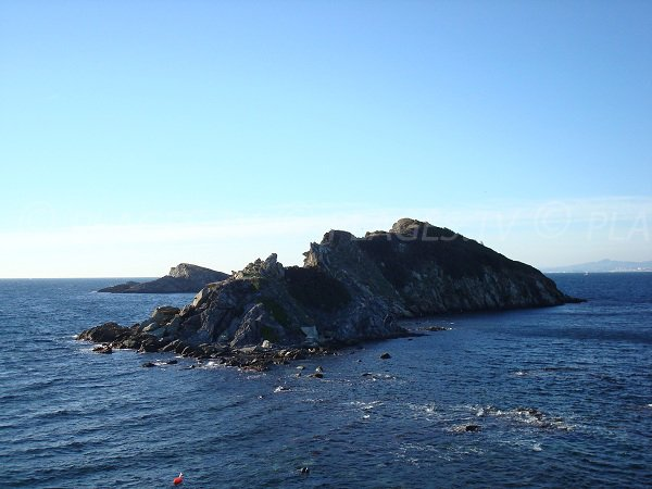 island of Redonne in Giens