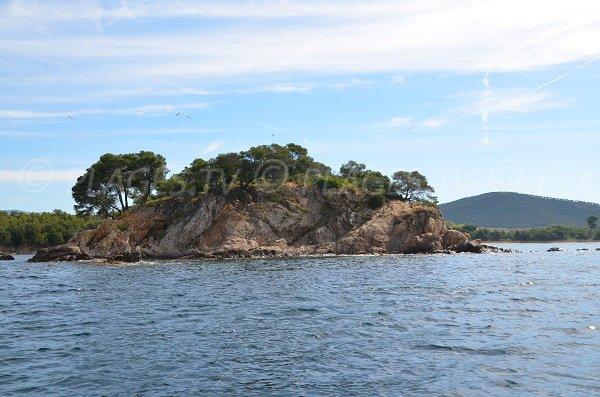 Leoube island